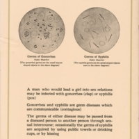 Germs of gonorrhea and syphilis
