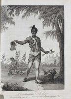 Ein indianascher Krieger mit eine Scalp...
